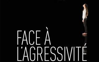 Face à l'agressivité : le nouvel ouvrage de Michel Benes